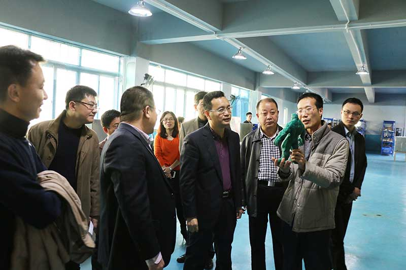 Deputy Director General of Guangdong Province Zhang Aijun and his party went to visit our company